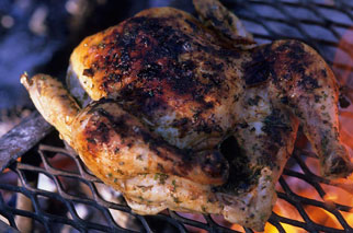 andrew dwyer recipe grilled chicken
